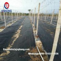 Wholesale Weed Barrier Around Fruit Trees PP Woven Weed Mat for Supress Weeds from china suppliers