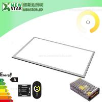 China 24W 600x300mm 24V Dual White LED Panel with RF Remote on sale