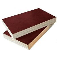 China China hot sale black film faced plywood prices shuttering plywood with good price on sale