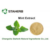 Buy cheap Herbal Extract Mint Plant Extract Powder , Natural Herbal Extracts ISO Certified from wholesalers