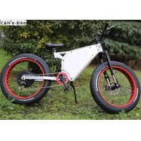 48V 20Ah Electric Mountain Bikes With Fat Tires And Lithium Ion Battery