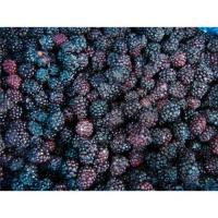 Buy cheap IQF blackberry from wholesalers