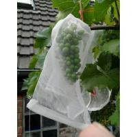 China 100% HDPE UVRadiationAgents 3% Fruit Tree Covers , Bags To Cover Fruit On Trees on sale