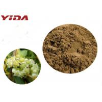 China YIDA GMP Certification Dodder Seed Extract Powder Remedy Sexual Problems on sale