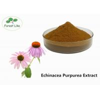 Wholesale Echinacea Extract Powder 2% Cichoric Acid from china suppliers