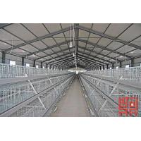 Buy cheap A Frame Semi Automatic Broiler Chicken Cage from wholesalers