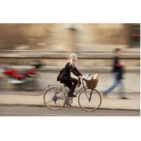 lady bicycle with dynamo coaster brake for sale
