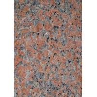 Wholesale G562 Maple Red Granite Stone Slab Flooring Tile Polished Flamed Bushhammered from china suppliers