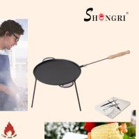 Wholesale camping pre-seasoned grill pan with long wood handle from china suppliers