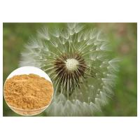 Wholesale Dandelion Root Plant Extract Powder Brown Color HPLC 5% Food Grade Anti - Aging from china suppliers