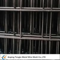 """Wholesale Black Welded Wire Mesh 