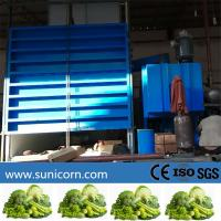 Wholesale Industrial Vacuum Pre Cooling Machine 6 Pallets For Cooling Fresh Produce After Harvest from china suppliers