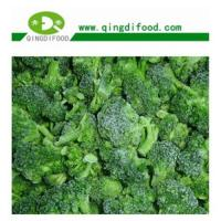 Wholesale IQF Broccoli from china suppliers