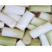 Wholesale I.Q.F.Spain Fresh Spring Onion from china suppliers