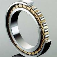 Wholesale Single Row Full Complement Cylindrical Roller Bearings ID over 150mm from china suppliers