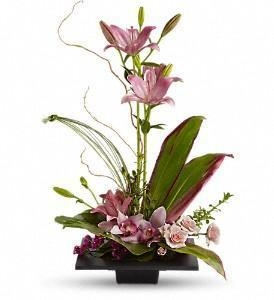 China Imagination Blooms with Cymbidium Orchids [T256-1A]