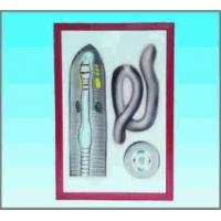 Buy cheap Enlarged earth worm dissection from wholesalers