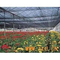 Wholesale Agricultural Shade Netting from china suppliers