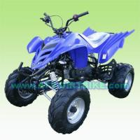 Off-Road ATV ADULT FALCON250