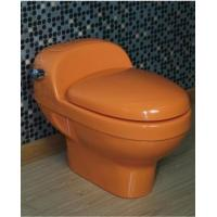 toilet colorful water closet