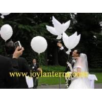 Buy cheap Bio White Dove Balloons from Wholesalers