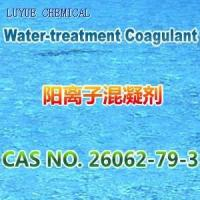 China LYPW-305 Water treatment coagulant on sale