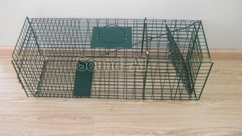 Quality Collapsible One-door Live Animal Cage Trap For Raccon,Stray Cat,Groundhog, Opossum,Armadillos SD649 for sale