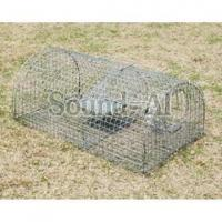 Wholesale Traps and Cages Home Page Multi-catch mouse trap SD634 from china suppliers
