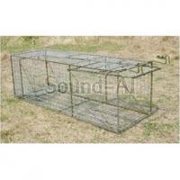 Wholesale Traps and Cages Home Page Medium Live Animal Cage Trap / Cat TrapSD620 from china suppliers