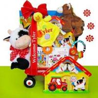 Wholesale Baby Einstein Day on the Farm Baby Gift Basket from china suppliers