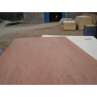 Wholesale 9mm Bingtangor Plywood from china suppliers