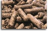 Quality Sugar Beet Pulp for sale