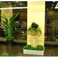 Wholesale Rental flowers from china suppliers
