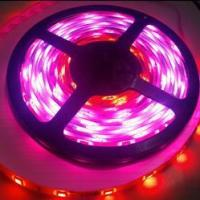 Wholesale WS2801 LED Strip 3-LED Control LED Strip from china suppliers