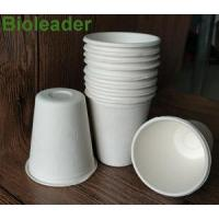 Wholesale Bowl & Cup Sugarcane Bagasse Cup-8oz from china suppliers