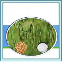 Wholesale Oat Beta-Glucan from china suppliers