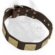 Wholesale Outstanding Leather Dog Collar With Massive Handmade Brass Plates from china suppliers