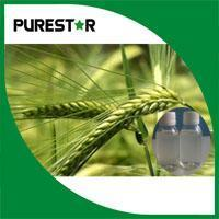 Wholesale Oat Beta glucan from china suppliers