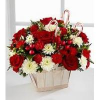 Wholesale Red Carnation NO.51 delivery flower to taiwan from china suppliers