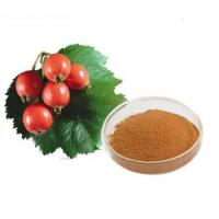 Wholesale Rose hips Extract from china suppliers