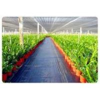 Wholesale Factory Price weed control mat, Ground cover, weed barrier, landscape fabric, weed control fabric from china suppliers
