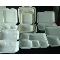 Sugarcane Bagasse Pulp Products
