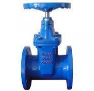 BS5163/GB Non ring stem Gate Valve