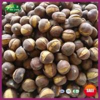 Wholesale 2014 Top Sale Organic Frozen Smiling Chinese Chestnuts Roasting from china suppliers