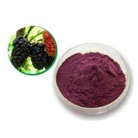 Wholesale Mulberry Leaf P.E mulberry leaf extract mulberry leaf powder from china suppliers