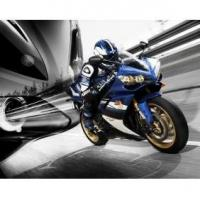 Wholesale 2008 Yamaha YZF-R1 from china suppliers