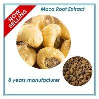 Wholesale wholesale Maca P.E 10:1 from china suppliers