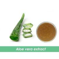 Wholesale natural aloe vera leaf p.e 20:1 from china suppliers