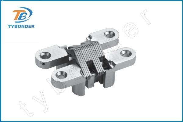 China Zinc Alloy concealed hinges TBD039