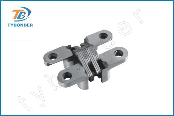 China Stainless Steel concealed hinges TBD048